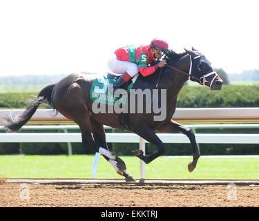 Lexington, KY, USA. 11th Apr, 2015. Protonico and jockey Javier Castellano win the Ben Ali at Keeneland for owner - Stock Photo