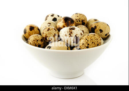 quail eggs in bowl - Stock Photo