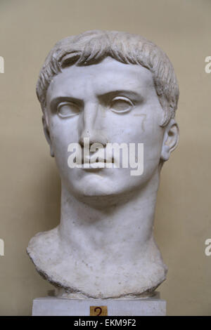 Bust of emperor Augustus. Colossal head. Veio Dynastic cycle. Vatican Museums. Chiaromonti. - Stock Photo