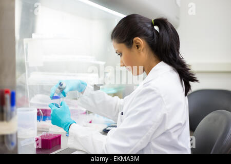 Closeup portrait, scientist holding 50 mL conical tube with blue liquid solution, performing laboratory experiments - Stock Photo