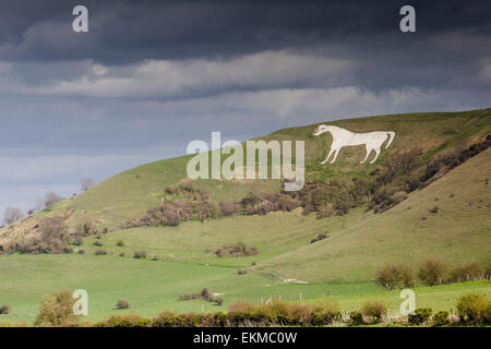 Wiltshire, UK. 12th April, 2015. UK Weather: Strong blustery winds high upon the landmark chalk White Horse above - Stock Photo