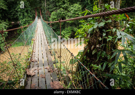Bridge over a river in the Danum Valley Conservation Area, Borneo, Malaysia - Stock Photo