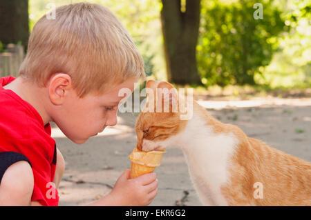 Child feeding cat his ice-cream cone