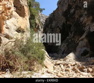 in the  torrent de pareis canyon majorca sa calobra