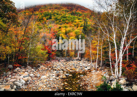 Low Angle View of a Mountain in Fog and a Dry Creek at Fall, White Mountains National Forest, New Hampshire - Stock Photo