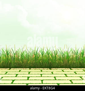 Summer hot day. The sun makes the way through clouds. Grass and stone tiles. - Stock Photo
