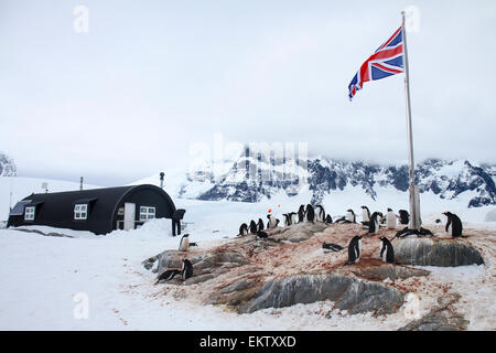 Port Lockroy, Antarctic Treaty Historic Site No. 61, British Base A. The base was used for research until 1962, - Stock Photo