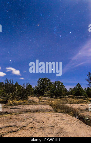 January 27, 2015 - Orion and Sirius rising in the moonlight over the rocky landscape of the Gila National Forest - Stock Photo