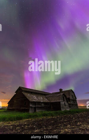 June 7-8, 2014 - An all-sky aurora with green and purple curtains in southern Alberta. The Big Dipper is visible - Stock Photo