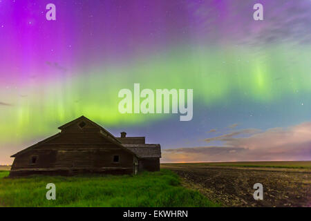 June 7-8, 2014 - An all-sky aurora with green and purple curtains in southern Alberta, Canada. Cassiopeia is visible - Stock Photo