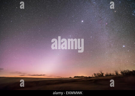 October 7, 2013 - The zodiacal light in the pre-dawn sky in Alberta, Canada. Leo is just rising left of centre, - Stock Photo