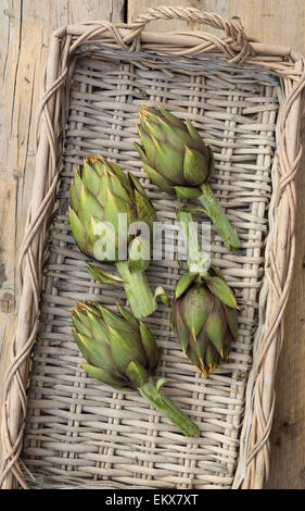 fresh artichokes from Sardinia in a basket, from above - Stock Photo