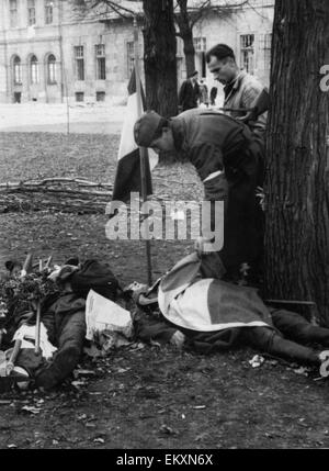 Freedom fighter looking for a brother who was killed outside the Second Opera House of Budapest, searches through - Stock Photo