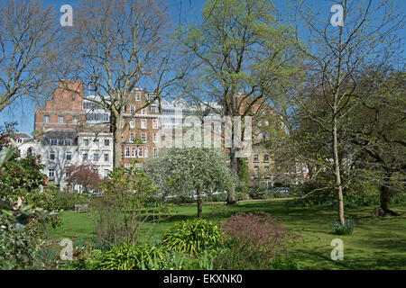 view looking north across the garden of kensington square, london, england - Stock Photo