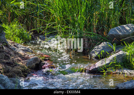 The Los Angeles River running through the Sepulveda Basin Recreation Area, Los Angeles, California, USA - Stock Photo