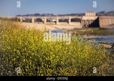 Sepulveda Dam, Sepulveda Basin Recreation Area, San Fernando Valley, Los Angeles, California, USA - Stock Photo