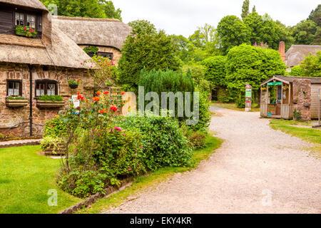 Cockington Village Torquay Devon Uk A Neglected And