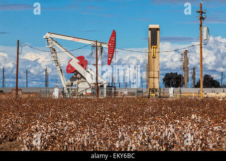 A pumpjack at oil well and fracking site situated in cotton field in Shafter. Kern County, California - Stock Photo