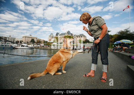 A Woman Trains Her Pet Dog In Victoria's Inner Harbour; Victoria, British Columbia, Canada - Stock Photo