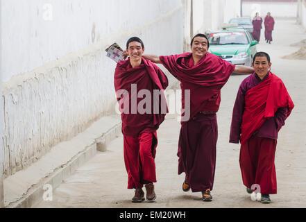 Happy faces of Tibetan Labrang Monastery monks after morning prayer; Tibet, China - Stock Photo