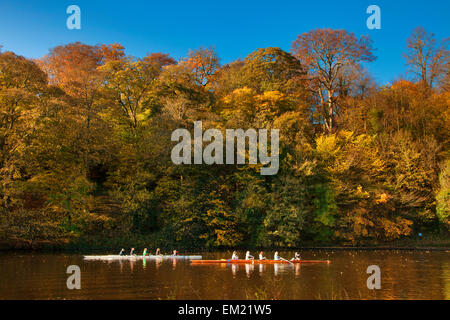 Rowers In Boats Travelling Down A Tranquil River In Autumn; Durham England - Stock Photo