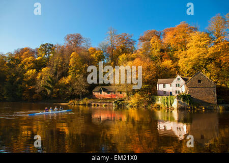 People Rowing A Boat Along The Shoreline Of A River In Autumn; Durham England - Stock Photo
