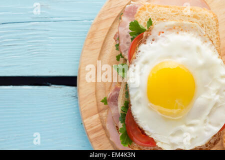 Sandwich with smoked pork, tomato and fried egg horizontal top view - Stock Photo