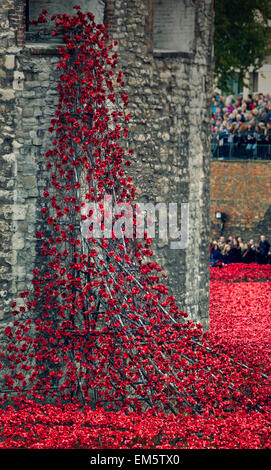 A waterfall of ceramic poppies at the Tower of London, UK. - Stock Photo