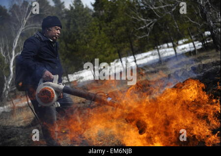 Novosibirsk Region, Russia. 16th Apr, 2015. Russian rescue service and local forestry service workers and volunteers - Stock Photo