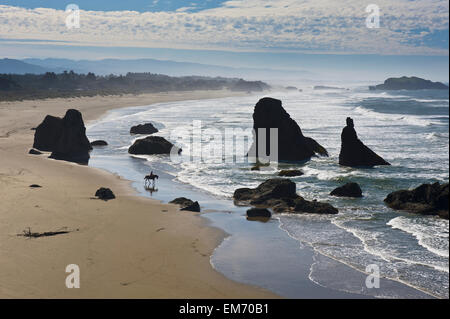 A woman takes a tranquil horseback ride on a solitary Pacific Ocean beach; Bandon, Oregon, United States of America - Stock Photo