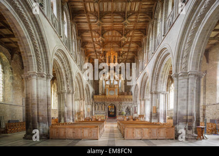 St Davids Cathedral Interior St Davids Pembrokeshire Wales - Stock Photo