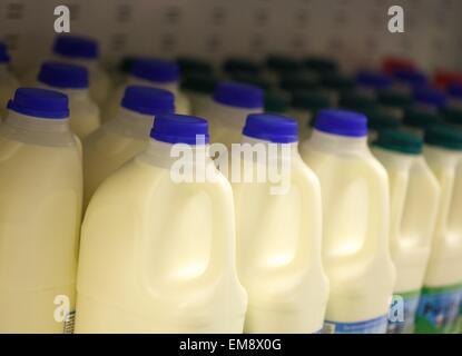 Plastic milk bottles in a supermarket - Stock Photo