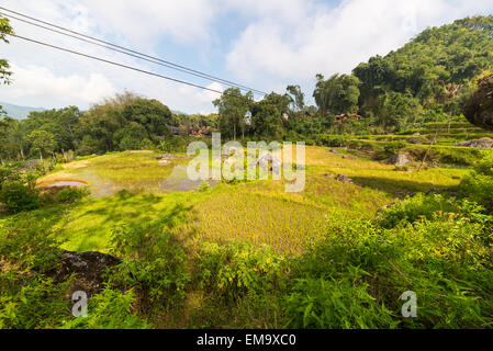 Little traditional village with tipical boat shaped roofs in idyllic location. Tana Toraja, Sulawesi, Indonesia. - Stock Photo
