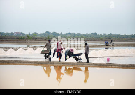 Thai people keeping salt from Salt farming or Salt evaporation pond to warehouse at Bangkhunthein in Bangkok Thailand. - Stock Photo