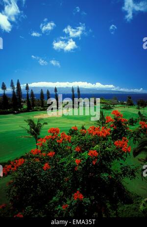 Hawaii, Maui, Kakapalua Golf Club Plantation Course - Stock Photo