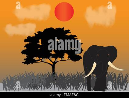 An Elephant under the setting sun on the Savannah with an Acacia Tree in the background the concept being endangered - Stock Photo