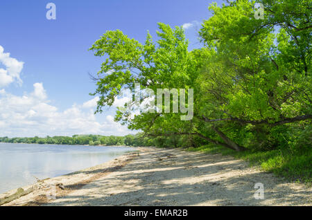 Pebbly Danube River Bank on a Sunny Day - Stock Photo