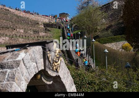 Radebeul, Germany. 19th Apr, 2015. Participants in the Mount Everest Stair Marathon run up and down a total of 397 - Stock Photo