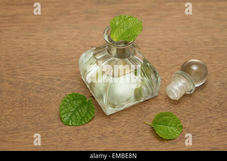 how to make mint oil with fresh mint