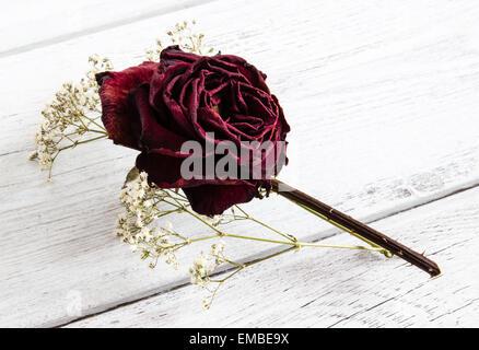 Dried red rose flower with gypsophila wedding buttonhole keepsake on white wood background