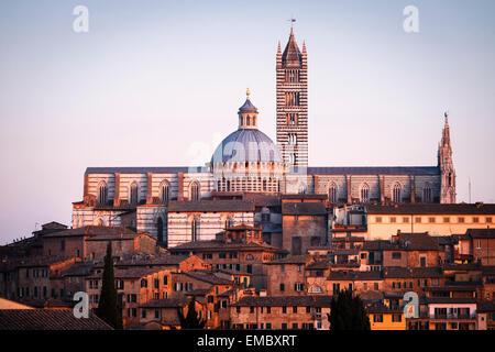 The Duomo (Cathedral, Siena, Tuscany, Italy. - Stock Photo