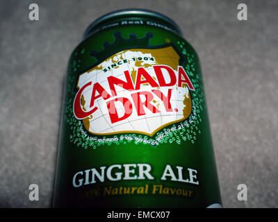 A can of Canada Dry ginger ale. - Stock Photo