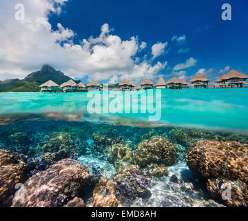 French Polynesia above and bellow water - Stock Photo