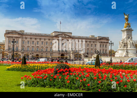 A Landscape view of Buckingham Palace  City of Westminster London England UK - Stock Photo