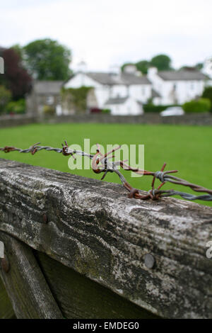 Barbed wire on wooden fence - Stock Photo
