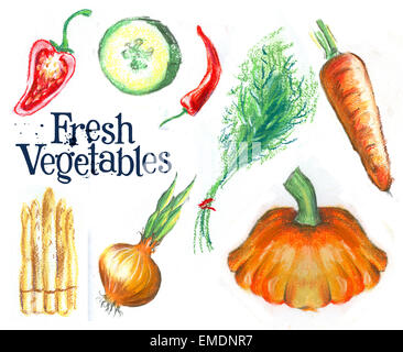 sketch. fresh vegetables on white background - Stock Photo