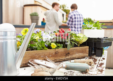 Couple Planting Rooftop Garden Together - Stock Photo