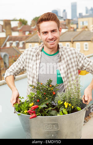 Man Holding Container Of Plants On Rooftop Garden - Stock Photo