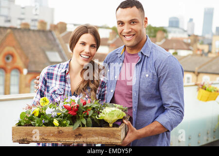 Couple Holding Box Of Plants On Rooftop Garden - Stock Photo