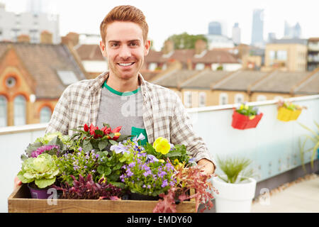 Man Holding Box Of Plants On Rooftop Garden - Stock Photo